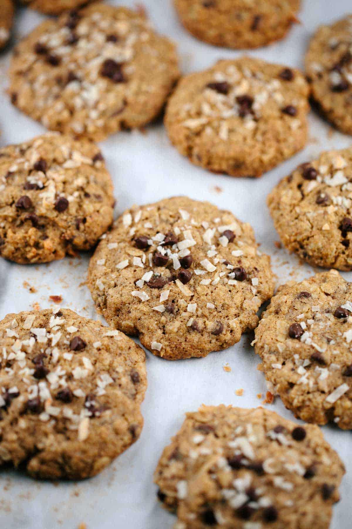 Oatmeal Chocolate Chip Coconut Lactation Cookies - A treat for breast feeding mommies! Brewer's yeast, flax seed and oatmeal are the special ingredients for this recipe. The cookies taste yummy too! | jessicagavin.com