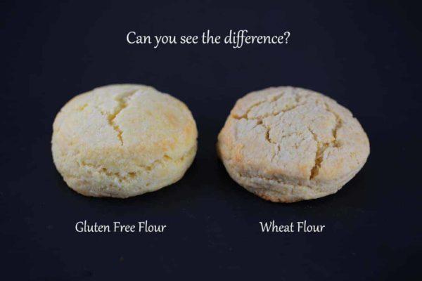gluten free flour alternatives comparison