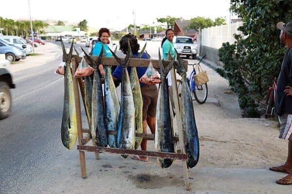 Fisherman in Vaitape, Bora Bora selling mahi mahi on the side of the road.