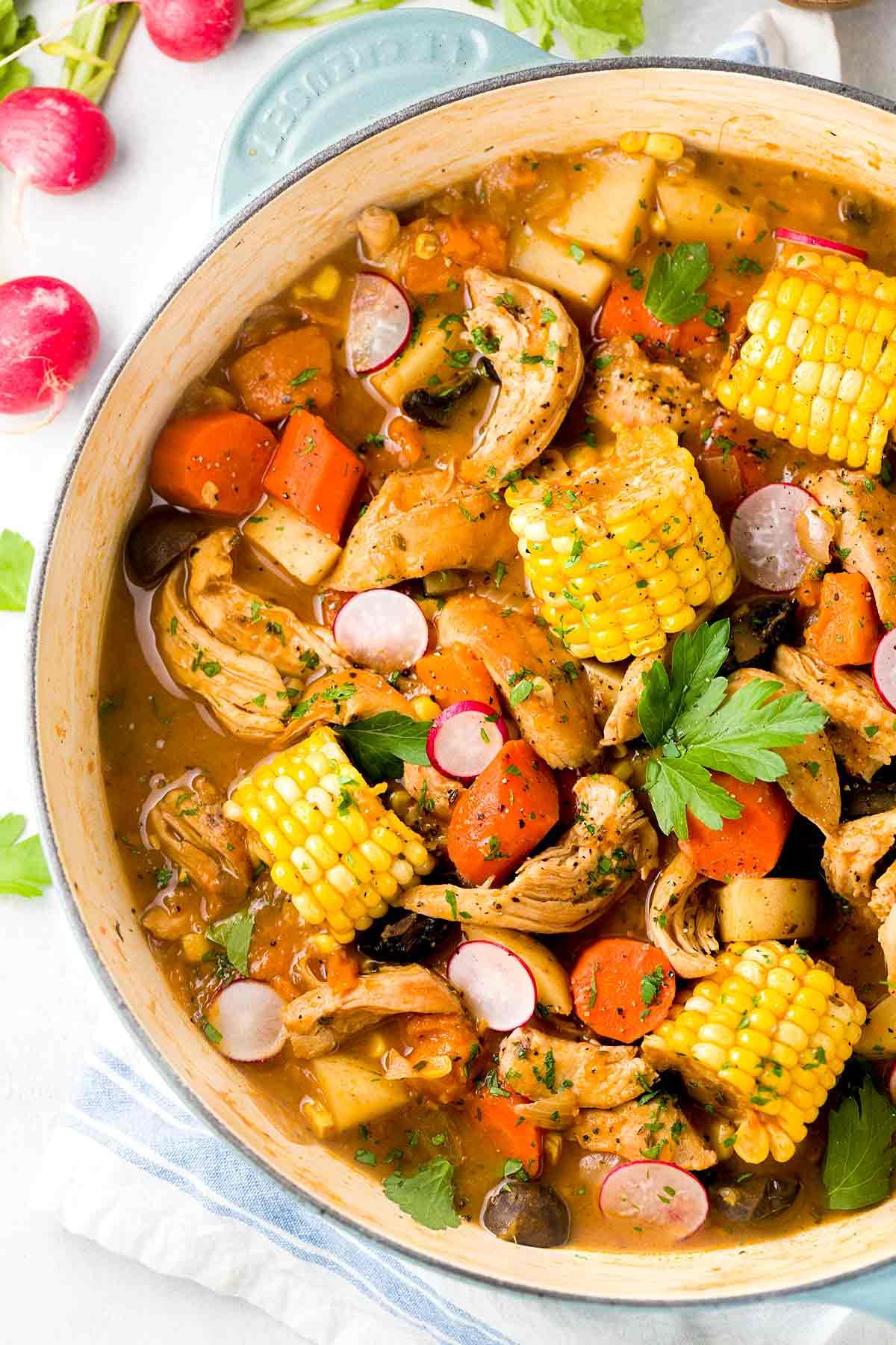 Chicken Vegetable Stew Dog Food Recipe