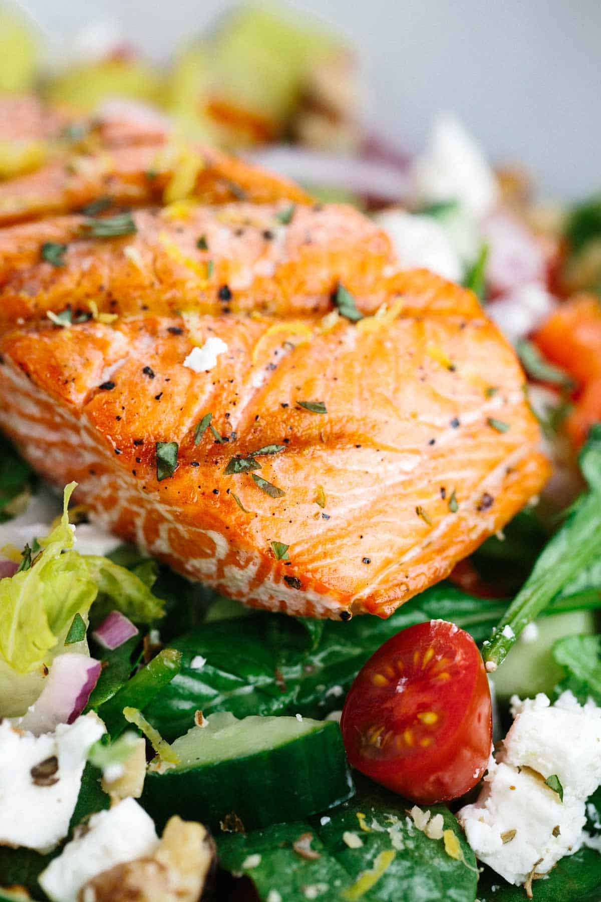 Salmon fillet placed on a bed of lettuce and tomatoes