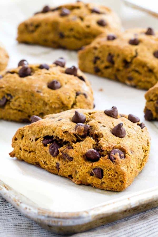 tray-pumpkin-chocolate-chip-scone