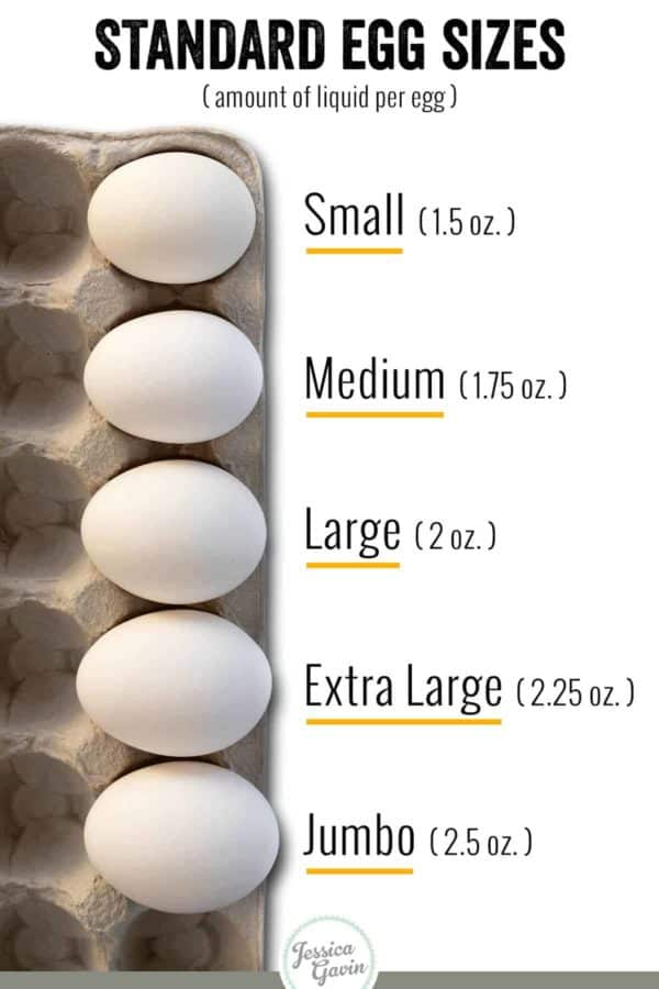 standard egg sizes infographic