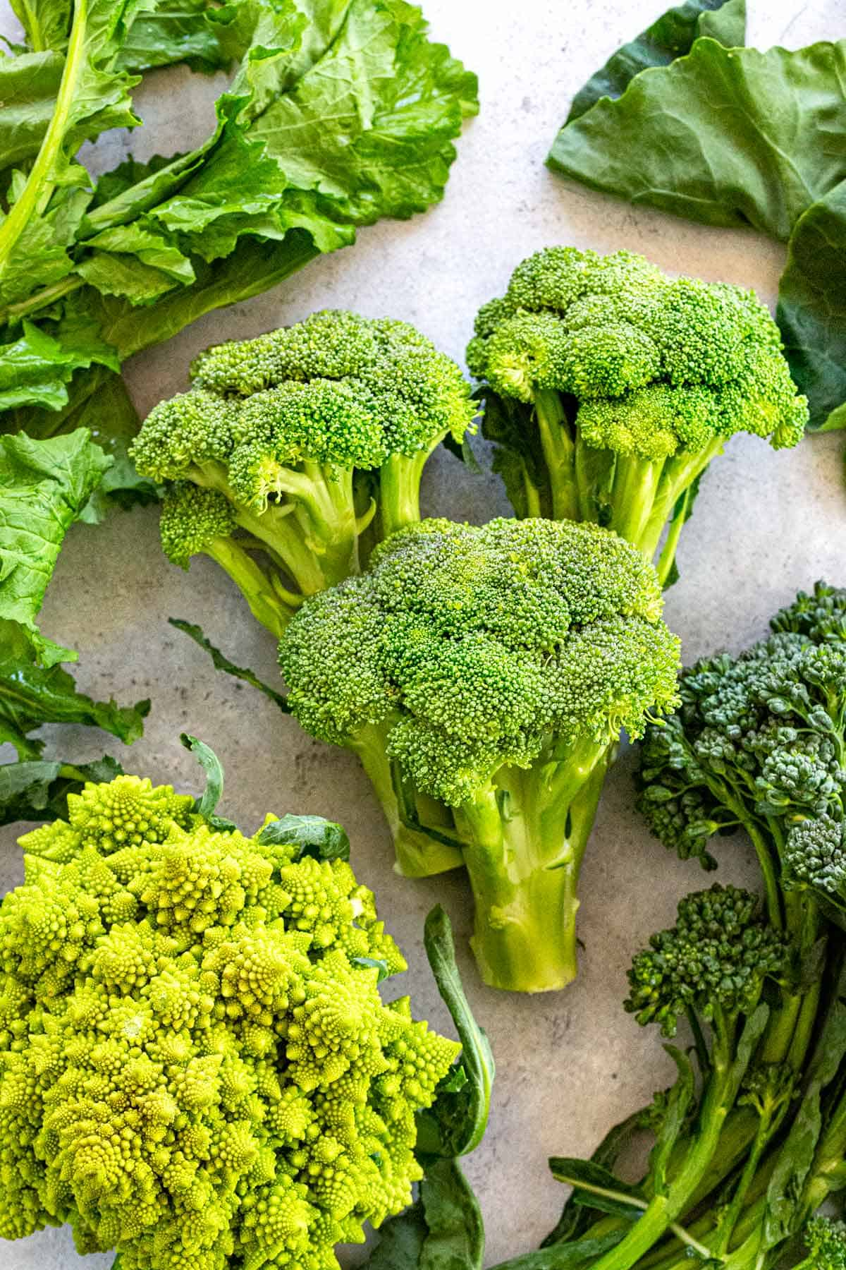 Did you know there are multiple types of broccoli? Oh yes, there's a whole world of this deep green veggie. #broccoli #vegetables #farmersmarket