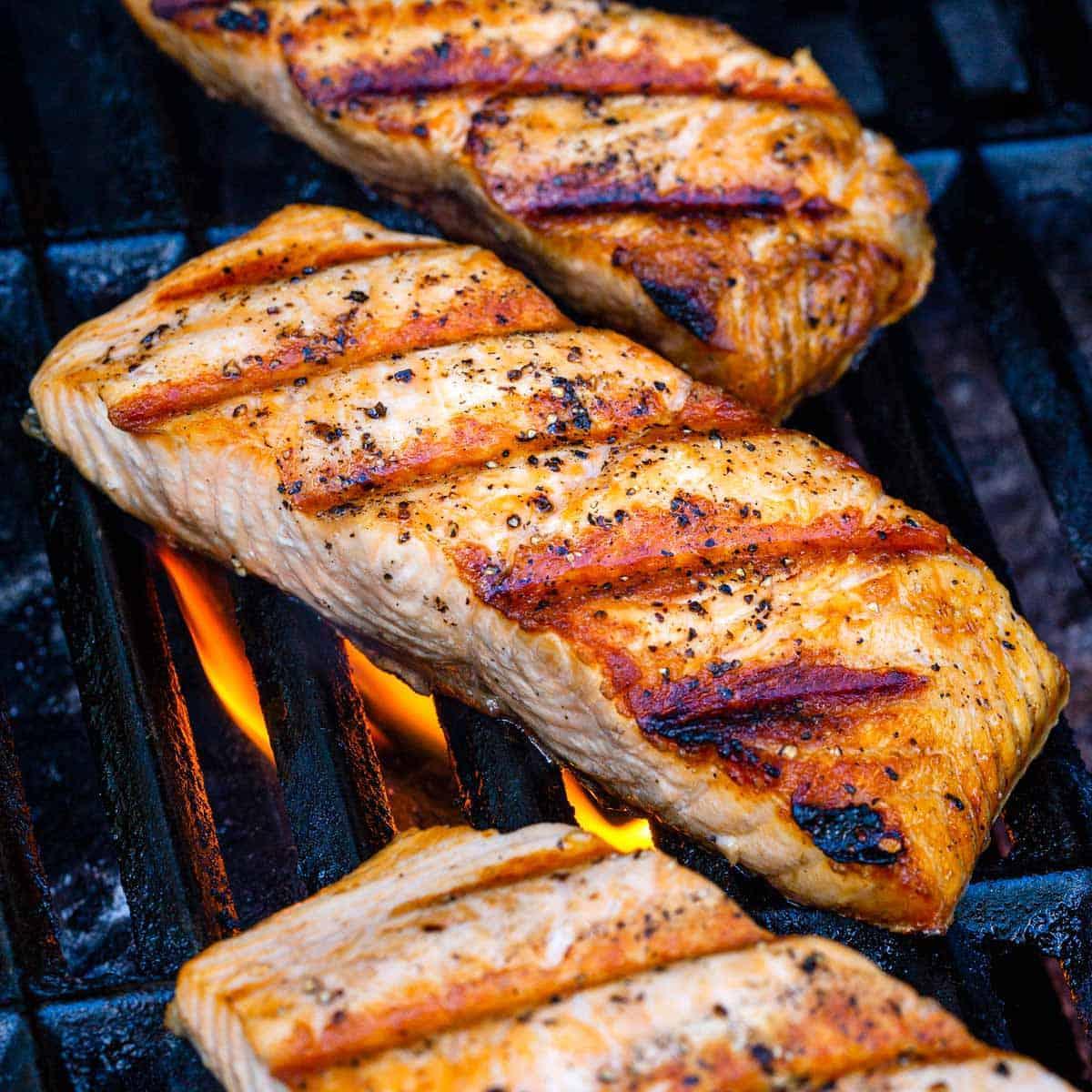 Grilled Salmon Jessica Gavin