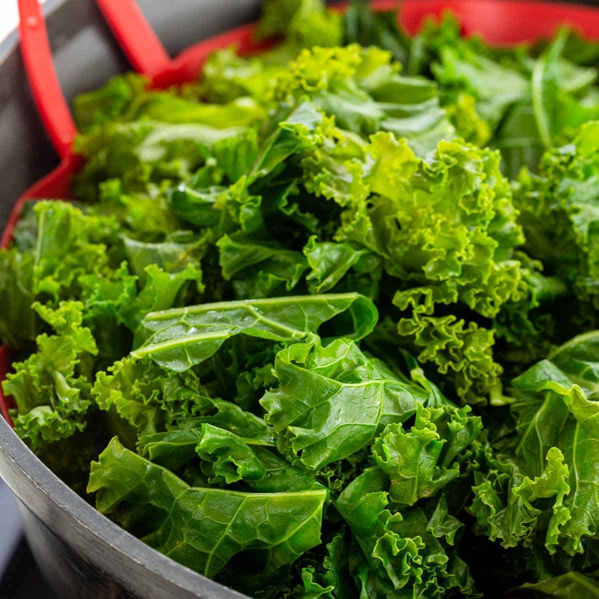 How To Cook Kale 2 Ways Jessica Gavin
