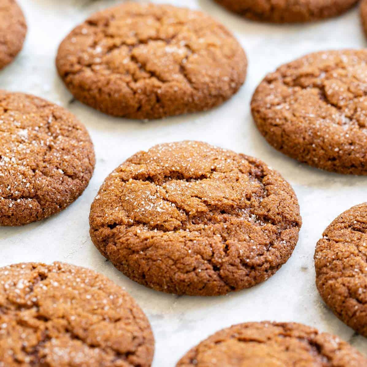 Gingersnap Cookies Jessica Gavin