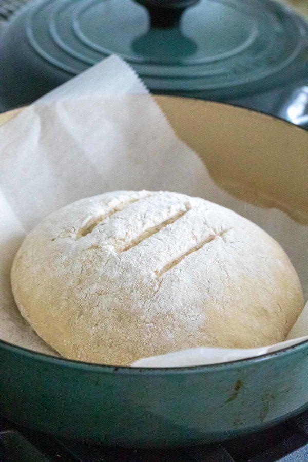 Bread dough in a dutch oven