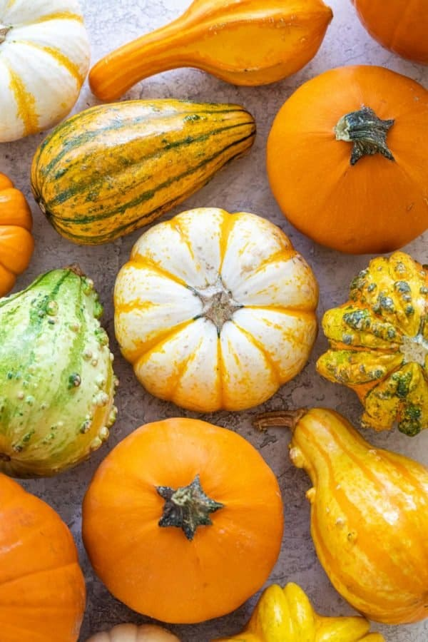 Several different types of pumpkins