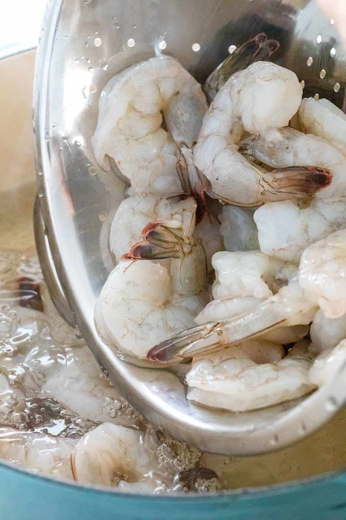 pouring shrimp into a large pot of hot water
