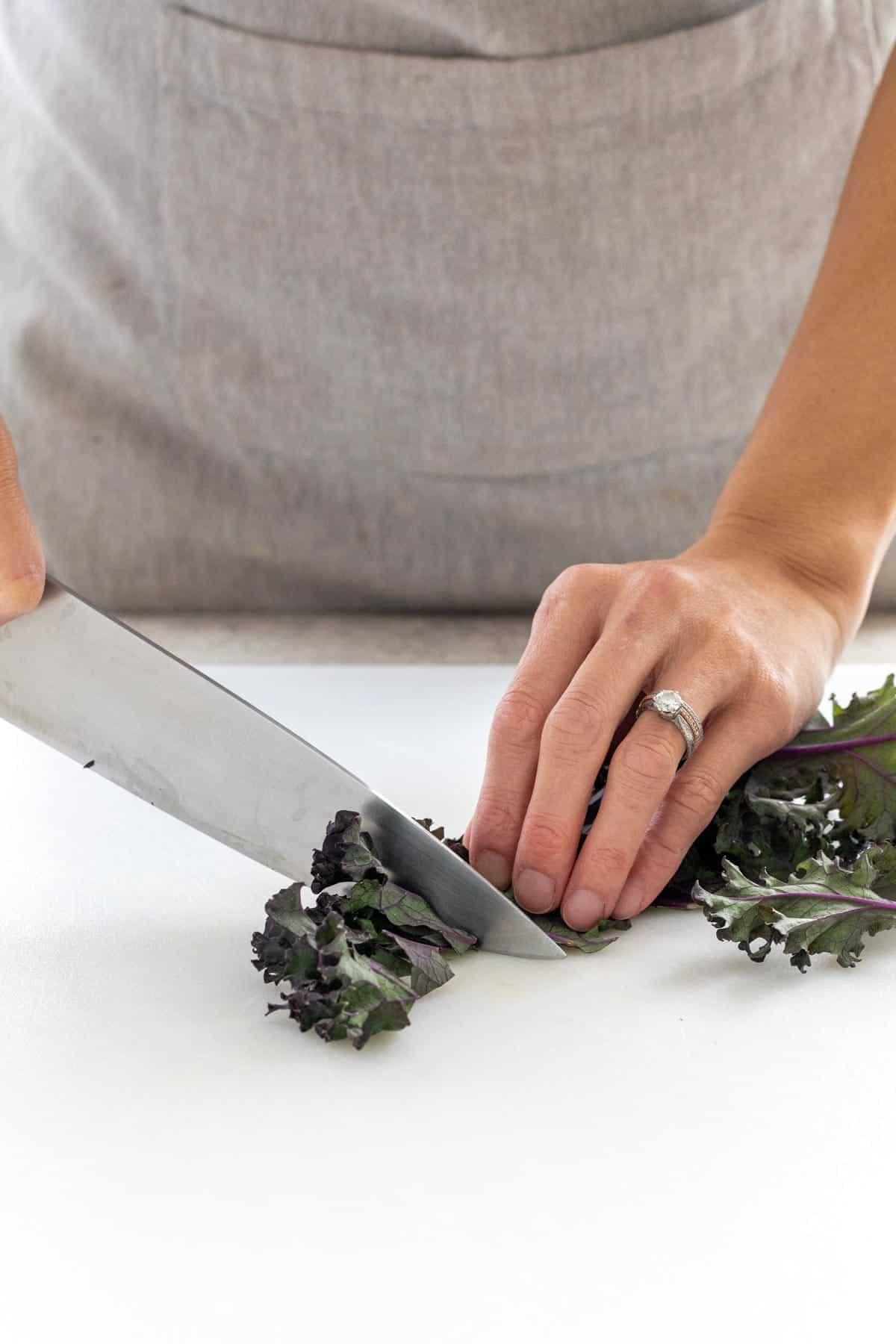 cut the kale into smaller pieces