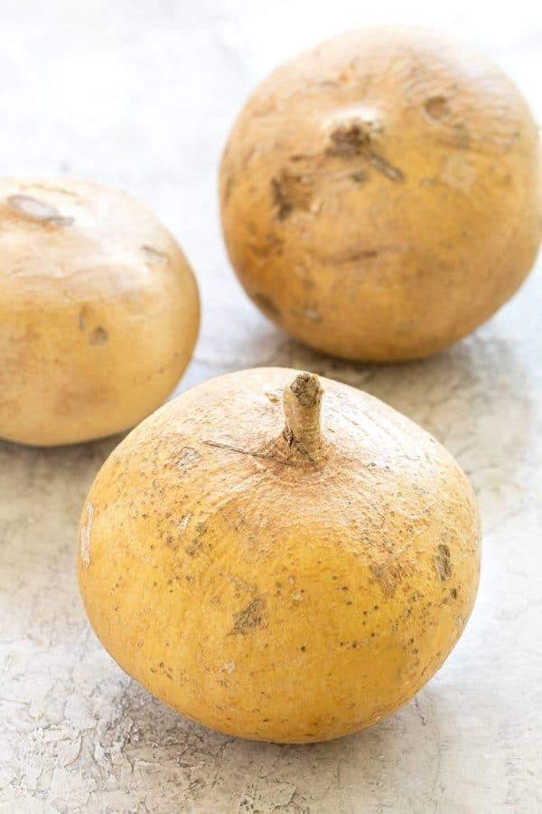 what is jicama